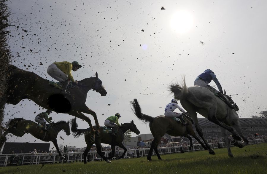 Free Horse Racing Tip – bet365 Gold Cup